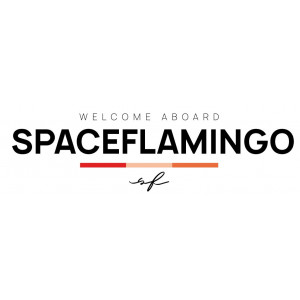 Space Flamingo